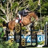 AMOUR ALRIC PALM BEACH MASTERS FEBRUARY 2018